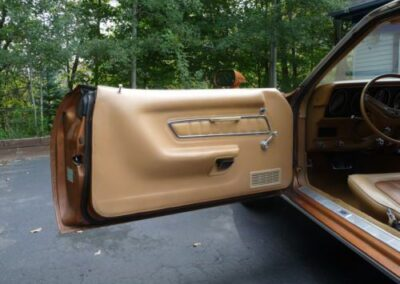 1973 Mercury Cougar Bronze Age Driver's Door Interior