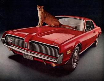 Cougar on Cougar