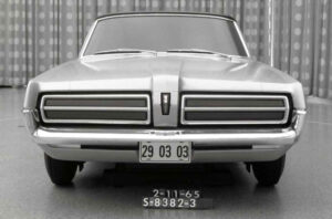 Early Cougar