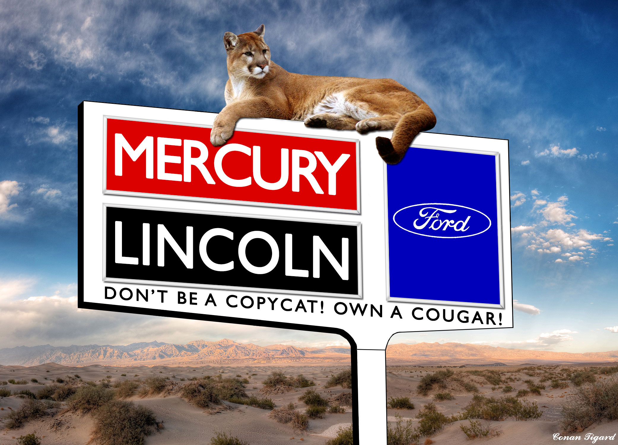 Ford Lincoln Mercury Sign